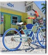 Blue Dog Matlacha Island Florida Acrylic Print