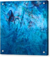 Blue Dream Acrylic Print