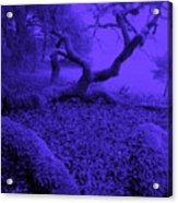 Blue Dreaming Moon Acrylic Print