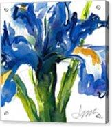 Blue Dutch Iris For Kappa Kappa Gamma Acrylic Print