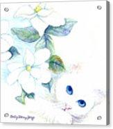 Blue Eyes Acrylic Print