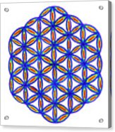 Blue Flower Of Life Acrylic Print