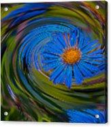 Blue Flower Whirlpool Acrylic Print