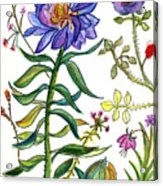Blue Flowers 55 Acrylic Print