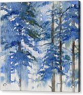 Blue Forrest Acrylic Print