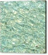 Blue Fossil Acrylic Print