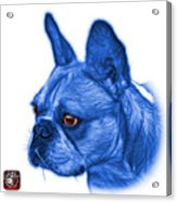 Blue French Bulldog Pop Art - 0755 Wb Acrylic Print
