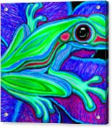 Blue Green Frog Acrylic Print