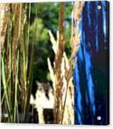 Blue Green Acrylic Print
