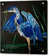 Blue Heron At Night Acrylic Print