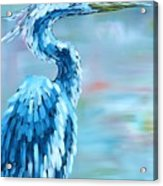Blue Heron Acrylic Print by Holly Donohoe