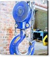 Blue Hook Acrylic Print