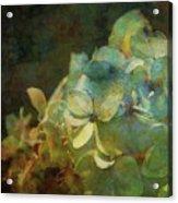 Blue Hydrangea Sunset Impression 1203 Idp_2 Acrylic Print