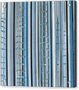 Blue Jay's Song Acrylic Print