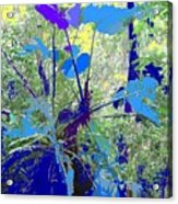 Blue Jungle Acrylic Print