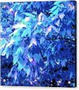 Blue Autumn  Acrylic Print