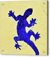 Blue Lizard Acrylic Print