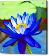 Blue Lotus Flower Acrylic Print