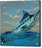 Blue Marlin Burst Acrylic Print