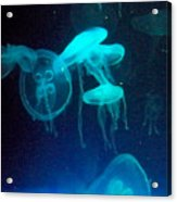 Blue Monsters Acrylic Print