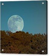 Blue Moon Risign Acrylic Print