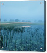 Blue Morning Flash Acrylic Print