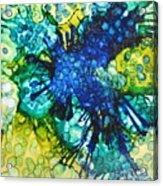 Blue Moth Acrylic Print