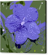 Blue On Green Work Number 9 Acrylic Print