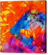 Blue On Orange Acrylic Print