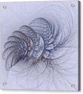 Blue Pagliai Ferns Acrylic Print