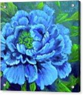 Blue Peony Jenny Lee Discount Acrylic Print