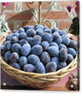 Blue Plums In A Basket Acrylic Print