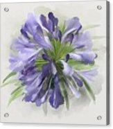 Blue Purple Flowers Acrylic Print