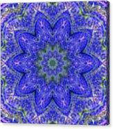 Blue Purple Lavender Floral Kaleidoscope Wall Art Print Acrylic Print