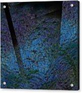 Blue Reflection Acrylic Print