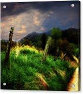 Blue Ridge Mountain Country Road Acrylic Print