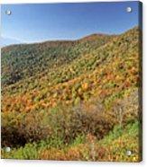 Blue Ridge Mountains In Autumn Acrylic Print