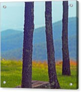 Blue Ridge Mountains Of Virginia Acrylic Print