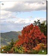 Blue Ridge Parkway, Buena Vista Virginia 5 Acrylic Print