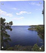 Blue Sea And Pine Trees Acrylic Print