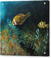 Blue Seas Acrylic Print