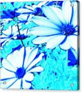 Blue Season Acrylic Print