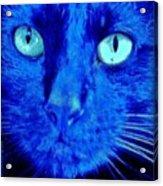 Blue Shadows Acrylic Print