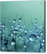 Blue Shower Acrylic Print