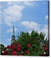 Blue Sky And Roses Acrylic Print