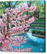 Blue Spring Acrylic Print