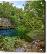 Blue Springs II Acrylic Print
