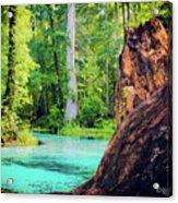 Blue Springs Acrylic Print