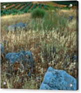 blue stones amongst the olive groves near Iznajar Andalucia Spain Acrylic Print