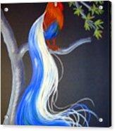 Blue Tail Fantasy Acrylic Print